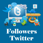 followers-twitter-2